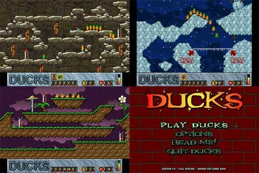 ducks_121_01.jpg
