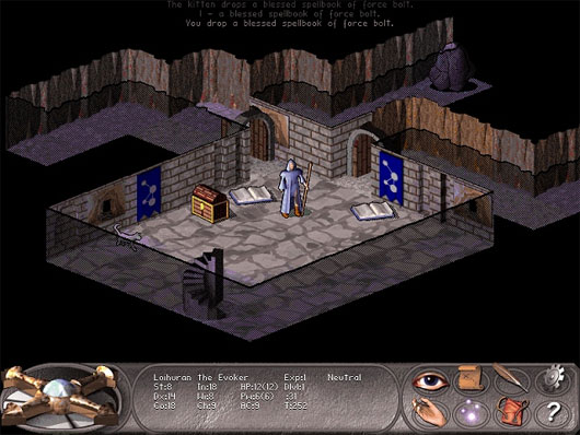 NetHack – Falcon's Eye